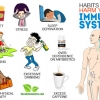 11 Habits that Harm Your Immune System