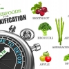Super foods for Detoxification
