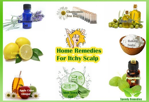 Comment Home Remedy Dog Itch