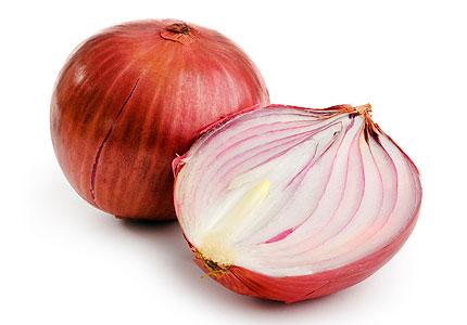 Tor Onion City