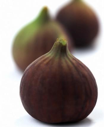 Fig benefits