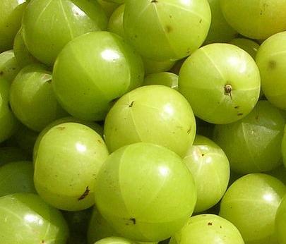 Indian gooseberry benefits