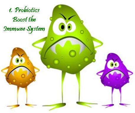 Probiotic for antibiotic