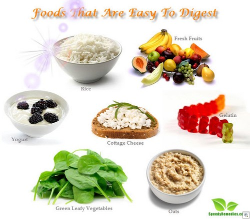 Foods easy to digest