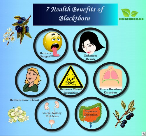 Blackthorn benefits