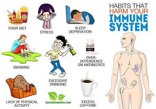 harm immune system